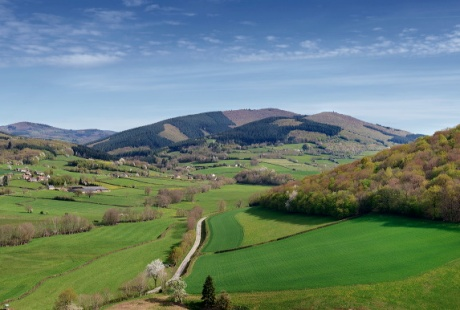 Vallée de La Roche
